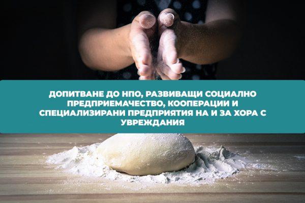 Анкета: Социалното предприемачество в България